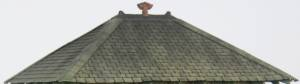 Roof (3)
